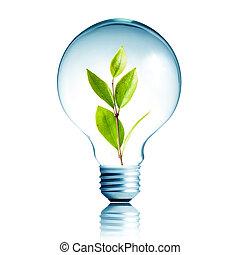 植物, eco, ライト, エネルギー, 概念, 緑, 成長する, 電球, 中