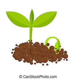 植物, germinal