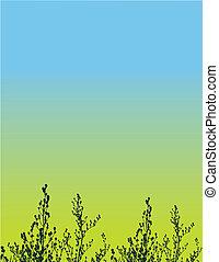 植物, grunge, 矢量, 背景