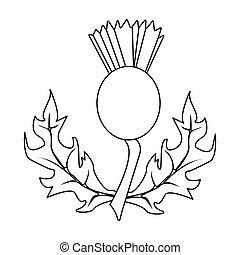 植物, illustration., アイコン, あざみ, シンボル, スタイル, 単一, ベクトル, 緑, scotland.scotland, 株, leaves.medicinal, アウトライン