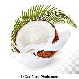 椰子, 在, a, 牛奶, 飛濺, 上, a, 透明, 背景。, vector.