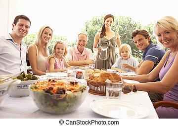楽しみなさい, ピクニック, 家族, 祖父母, 親, 子供