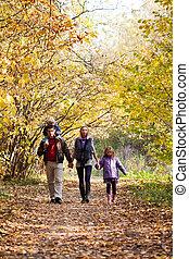 楽しむ, 公園, 家族, 歩きなさい