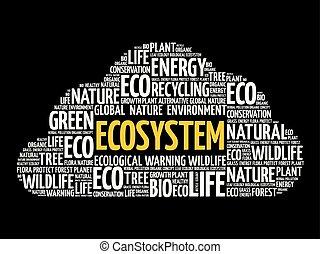 概念性, 生態系, 雲, 詞, 背景