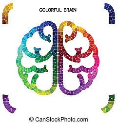 概念, カラフルである, 考え, 創造的, 脳, 権利, 背景, 左