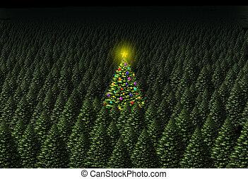 概念, クリスマス