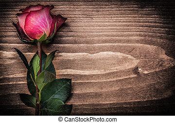 概念, バラのつぼみ, ホリデー, 木, 板, 赤