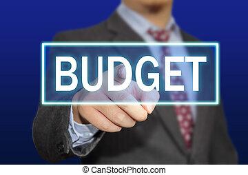 概念, 予算