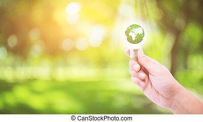 概念, 供給される, これ, ライト, エネルギー, 自然, -, 中, nasa., 手, 環境, 背景, エコロジー, 緑, 保有物, 世界, 電球, イメージ, 要素