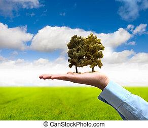 概念, 保護, 自然