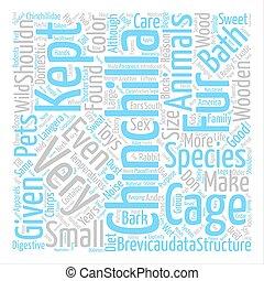 概念, 単語, テキスト, チンチラ, 背景, 雲