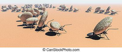概念, 工作, 蚂蚁, 队