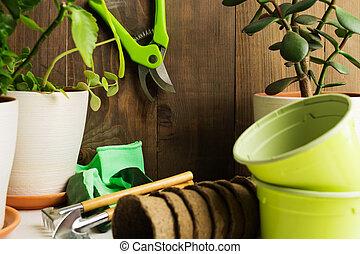 概念, 庭, ポット, 家, 植物, 道具