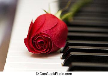 概念, 浪漫, 鑰匙, 上升, -, 鋼琴, 紅色