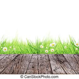 概念, 牧草地, 木製である, 春, 背景, 白, 板