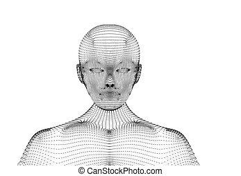 概念, 知性, wireframe, ライン, 人工, human., 接続, 背景, イラスト, モデル, 技術, 白, 未来派, 3d