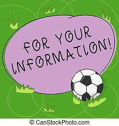 概念, 色, テキスト, photo., 監督しなさい, 形, ブランク, あなたの, いいえ, 執筆, needed, 共有される, サッカーボール, ビジネス, 概説された, information., インフォメーション, 単語, 行動, 草, ラウンド