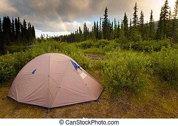 概念, 荒地, 露营