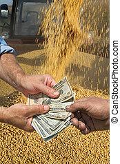 概念, 錢, 庄稼, 大豆, 手, 農業