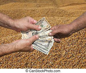 概念, 錢, 玉米 莊稼, 手, 農業
