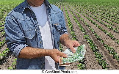 概念, 錢, 領域, 大豆, 農夫, 農業