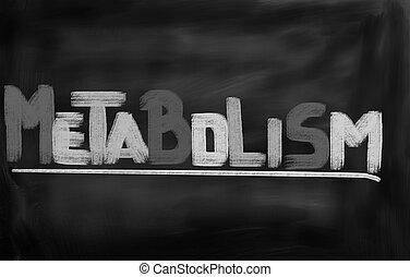 概念, metabolism