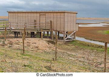 構造, 木製である, hide, ライ麦, 港, 鳥