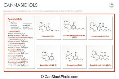 構造, 横, ビジネス, cannabidiol, cbd, インド大麻, infographic, フォーミュラ