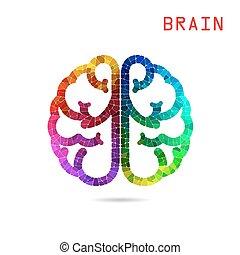 権利, カラフルである, 脳, 考え, 創造的, バックグラウンド。, 概念, 左