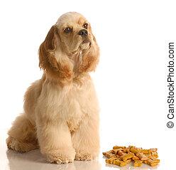 ∥横に∥, 骨, 犬, モデル