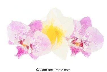 横列, の, 熱帯の花