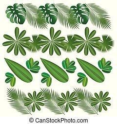 横, patterns., 葉, の, トロピカル, plants., 隔離された, items.,...
