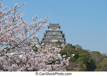 樱桃, himeji 城堡, 花