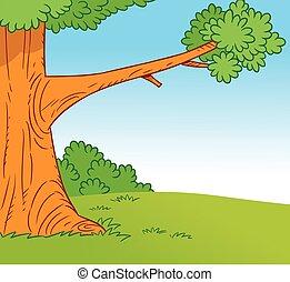 樹森林, 林間空地