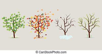 樹。, 四, 矢量, 設計, 套間, 集合, 季節