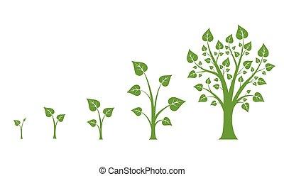 樹, 成長, 矢量, 圖形