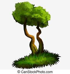 樹。, 插圖