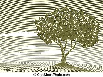 樹, 木刻, 風景