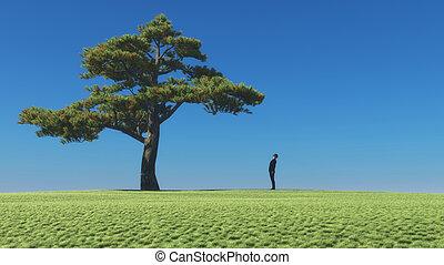 樹, 看, 人