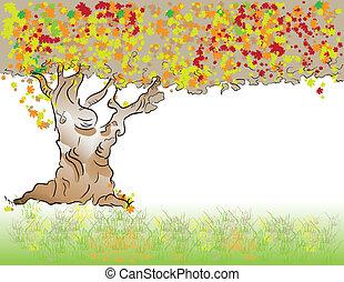 樹, 秋天