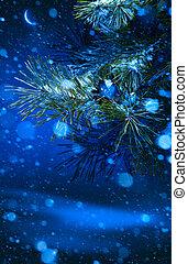 樹, 聖誕節, 背景, 夜晚