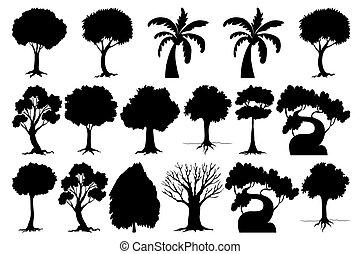 樹, 集合, 黑色半面畫像