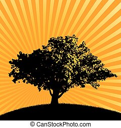 樹, 鮮艷, 背景, 喜慶