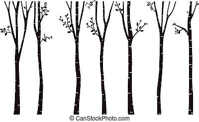 樹, 黑色半面畫像, 背景, 樺樹