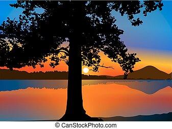 樹, 黑色半面畫像, 鮮艷, 天空