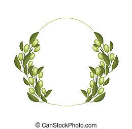 橄欖, 新鮮, 白色, 花冠, 背景