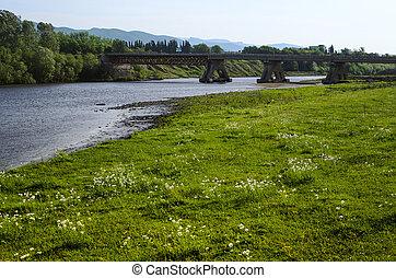 橋, ジョージア, 自動車, 上に, 川, georgian
