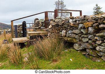 橋, ステップ, wicklow, 人工である, 山