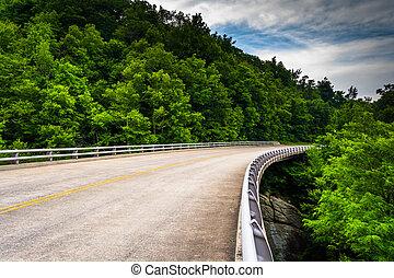 橋, 上に, ∥, 青い峰遊歩道, 中に, 北, carolina.