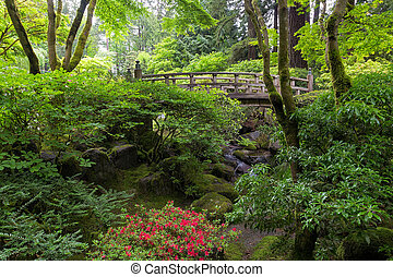 橋, 中に, 日本の庭